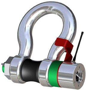 100Te Load Shackle